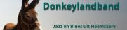 Donkeylandband